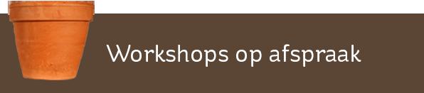 Workshops op afspraak